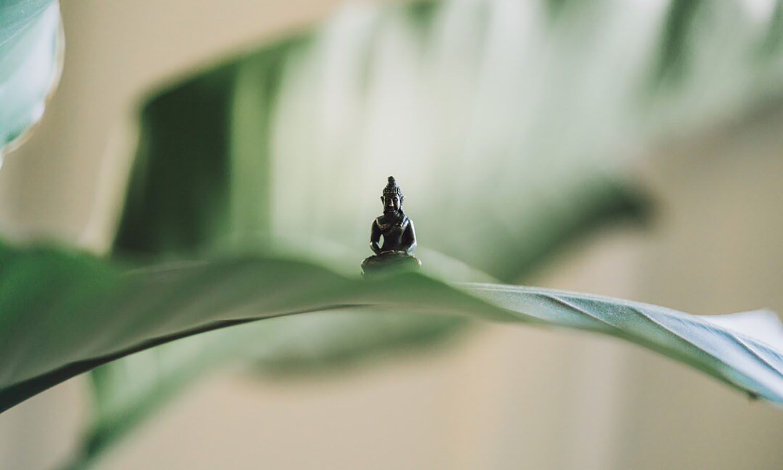 Waarom zou je mediteren